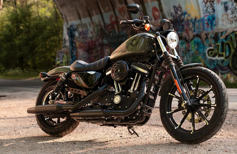 Harley Davidson Iron 883 Best Beginner Cruiser Motorcycles for New Motorcycle Riders